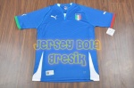 italy_home_2013 copy